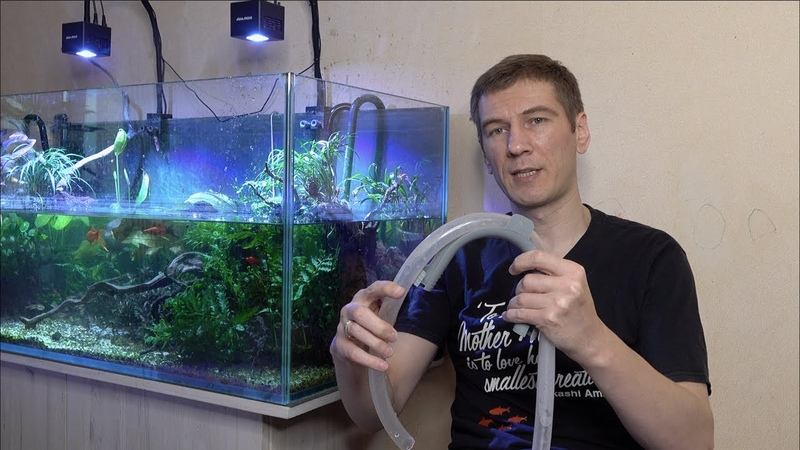 Пять лайфхаков по уходу за аквариумом