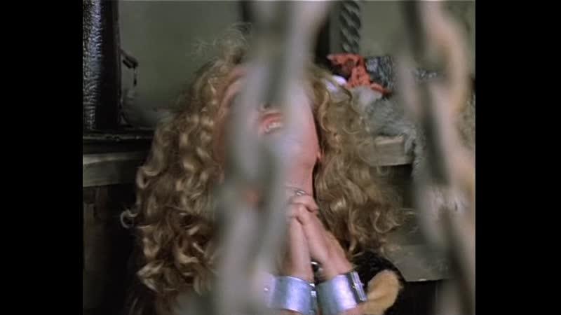 Д'Артаньян и три мушкетёра 3 серия из 3 1979