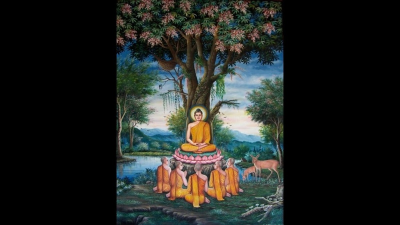 12 часов чтения 225 Сутт ❤️ Советы Будды 🙏 Выход из сансары 🙏 7 Жизней Максимум 🙏 Дхамма Татхагаты 🙏