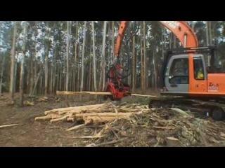 Harvester SP 591 LX - Hitachi Zaxis 200 - Eucalyptus Debarking