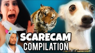 SCARE CAM JUNE 2020 | Prank Compilation #8 | Try Not To Laugh