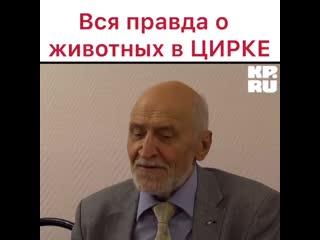 Вся правда о ЖИВОТНЫХ в ЦИРКЕ!!!! ШОК!!!