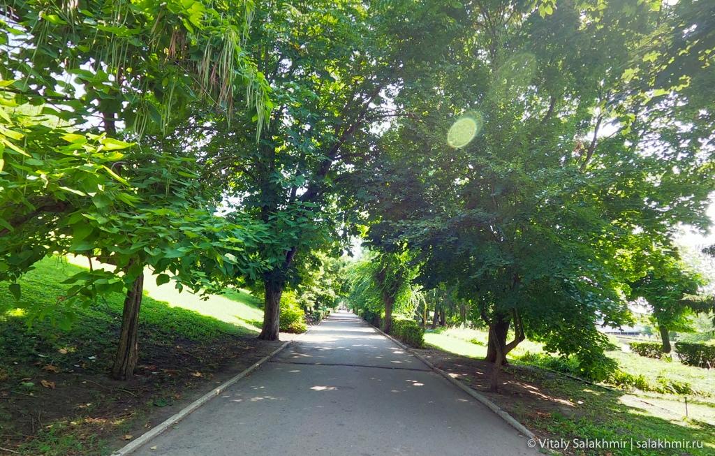 Парк около набережной в Саратове 2020
