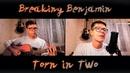 Breaking Benjamin Torn in Two Deceptive Paradigm cover