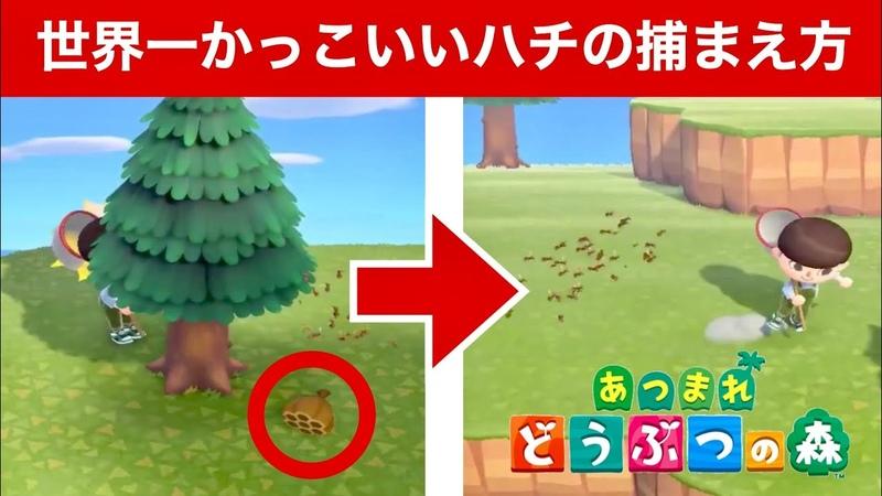 【あつ森】世界一かっこいいハチの捕まえ方 FUNNIEST MOMENTS of Animal Crossing: New Horizons