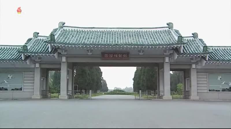 선물식물들에 비낀 위인칭송의 세계 중앙식물원 국제친선식물관을 찾아서 박하향나무 잔사슴뿔고사리