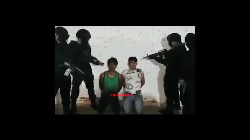 мексиканский картель прикончил двух воров