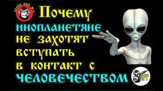 Почему инопланетяне не захотят вступать в контакт с человечеством
