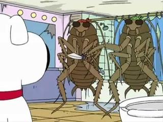 Family Guy - Bad Roaches