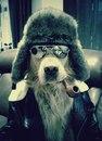Личный фотоальбом Георгия Горохова