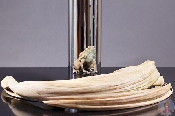 Джонти Гурвиц создает абстрактные скульптуры, которые в отражении зеркального цилиндра становятся