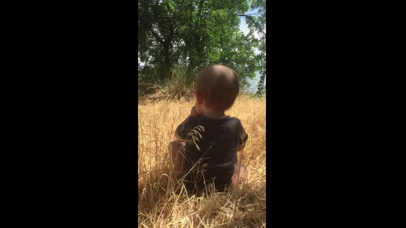 Природа и сын