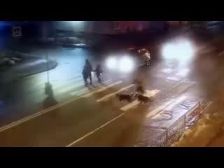 Сбил насмерть женщину в Архангельске