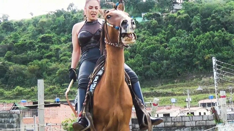 Horse to stand still while mounting ponyboy