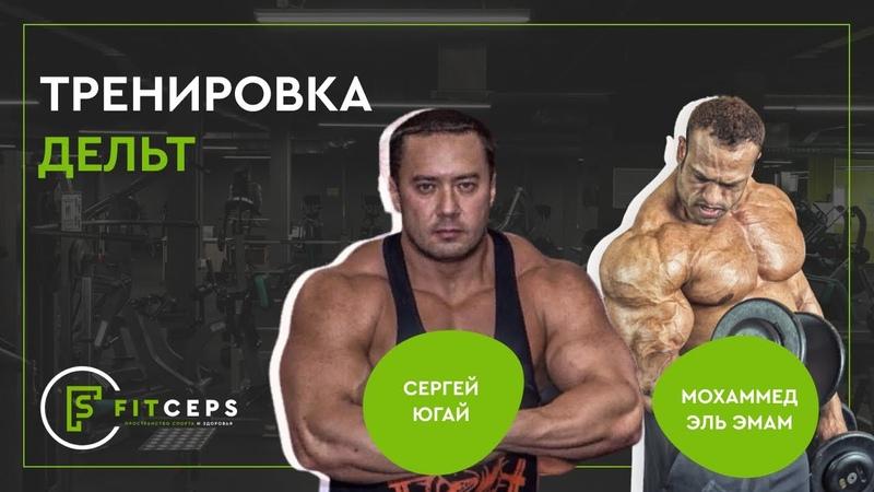 Мухаммед Эльэмам и Сергей Югай Тренировка дельт