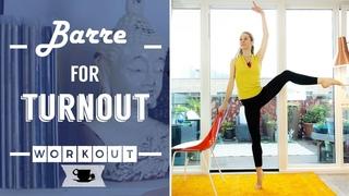 Ballet Barre for Turnout | Lazy Dancer Tips