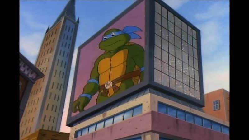 Я шеф черепаха всего этого дурацкого городишки Leo