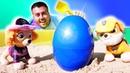 Çizgi film oyuncakları Paw Patrol hazine arıyorlar Çocuk videosu