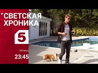 АНОНС: Алексей Воробьев в программе Светская хроника 24 апреля в 23:45 на Пятом канале