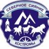 """ТУРИСТИЧЕСКИЙ ПРОЕКТ """"Северное сияние Костромы"""""""
