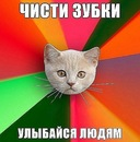 Фотоальбом Маши Молокоедовой