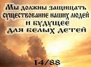 Фотоальбом Дмитрия Александровича