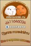 Morsvinki.ru