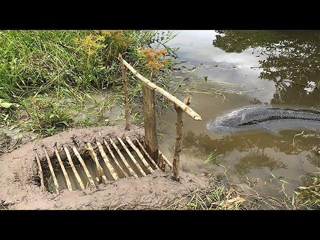 Smart Boy Make A Simple Fish Trap To Catch Big Fish-Cambodia Traditional Fish Trap smart boy make a simple fish trap to catch bi