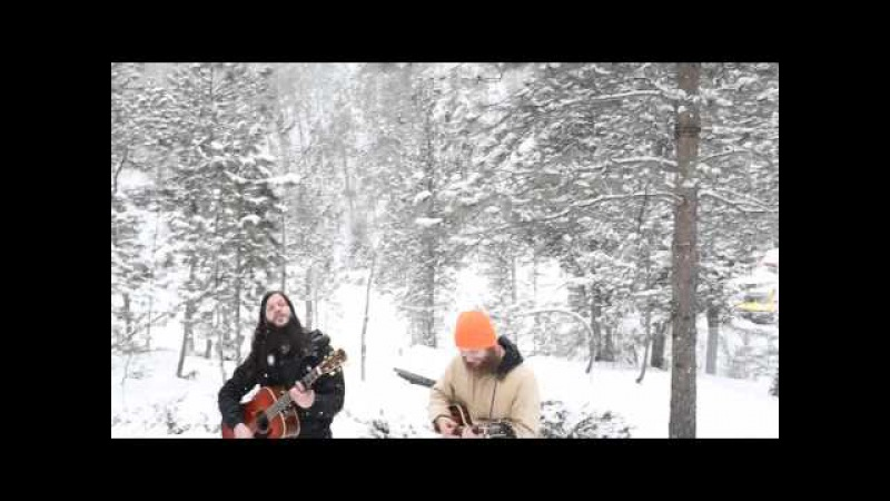 Shawn James | American Hearts (In A Wolf Sanctuary) - A. A. Bondy Cover