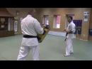 Karate lesson Hidden kick mawashi geri Скрытый маваши гери от Хасая Магамедова