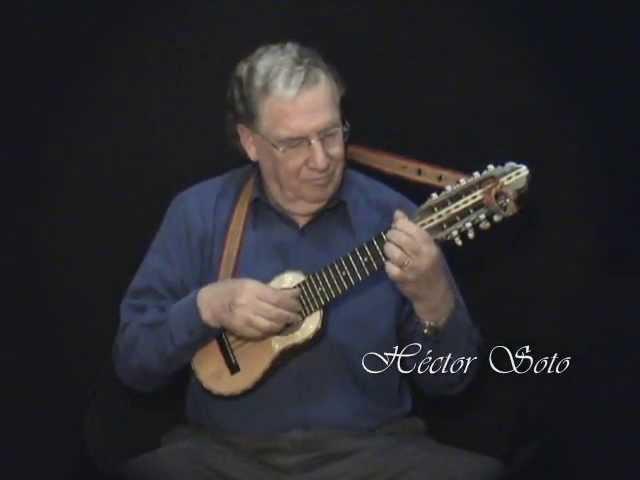 Quiero ser tu sombra Héctor Soto Charango Musica instrumental andina