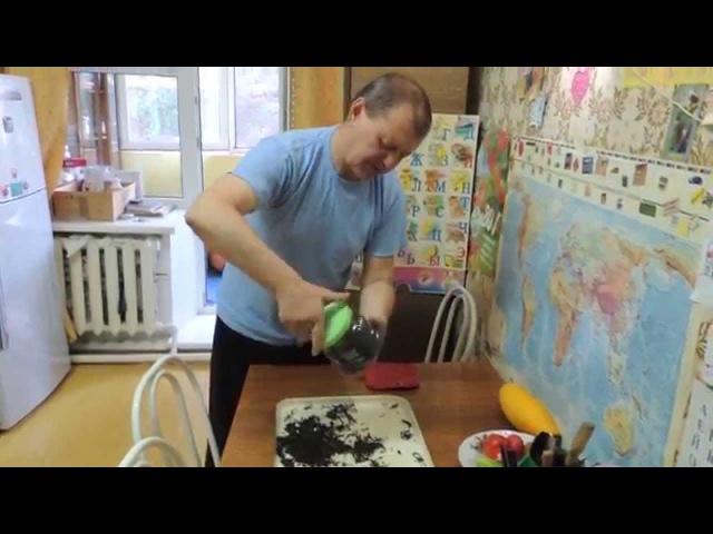 Классический листовой копорский чай 🌺 черный Иван чай Russian tea