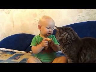 КОТ И МАЛЫШ ЕДЯТ ОДНУ БУЛКУ НА ДВОИХ!! dog,cat,kittens,котэ,коты,кошки