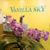Vanilla skY салон красоты в сердце Таллинна