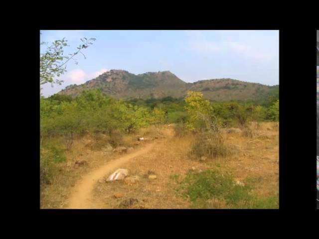 Шри Рамана Махарши 09 Тишина и сатсанг