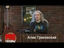 Pro Гитары - Алик Грановский