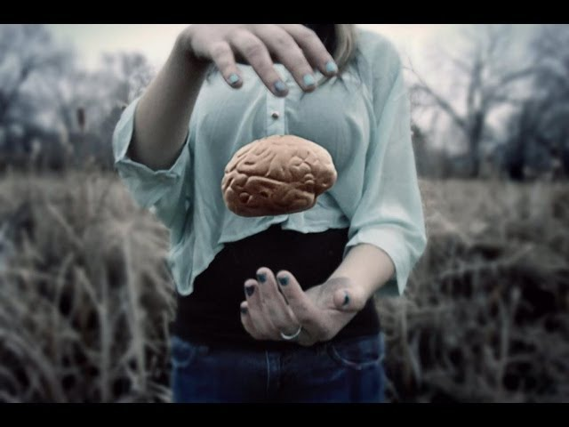 Shpongle Tickling the Amygdala Music Video