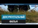 Русский крест над Балканами. Документальный фильм