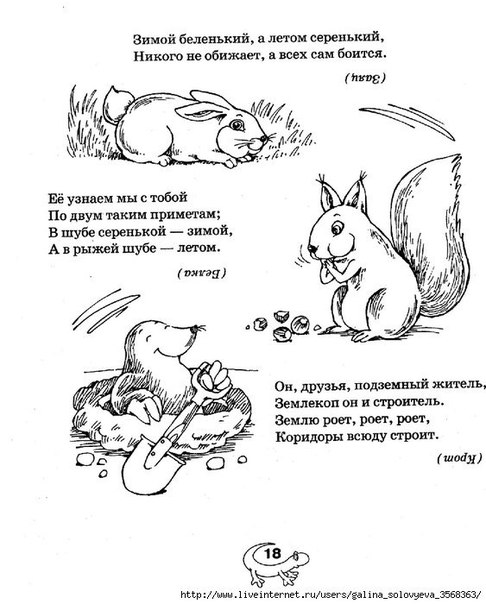 Картинки тайная жизнь домашних животных пушок