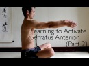 Exercise for Scapular Protraction