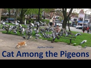 Learn English Through Story - Cat Among the Pigeons by Agatha Christie