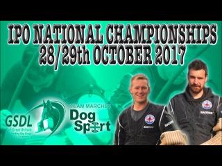 GSDL IPO Schutzhund National Championships 2017 promo video