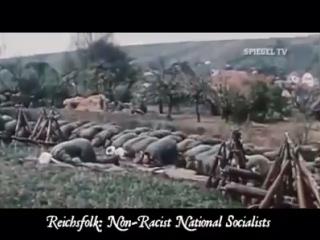 Дивизия СС Туркестан