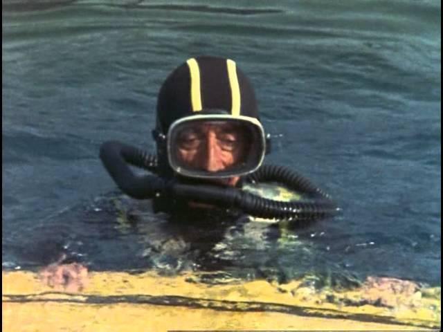 24 1973 Гиппопотамы Подводная одиссея команды Кусто