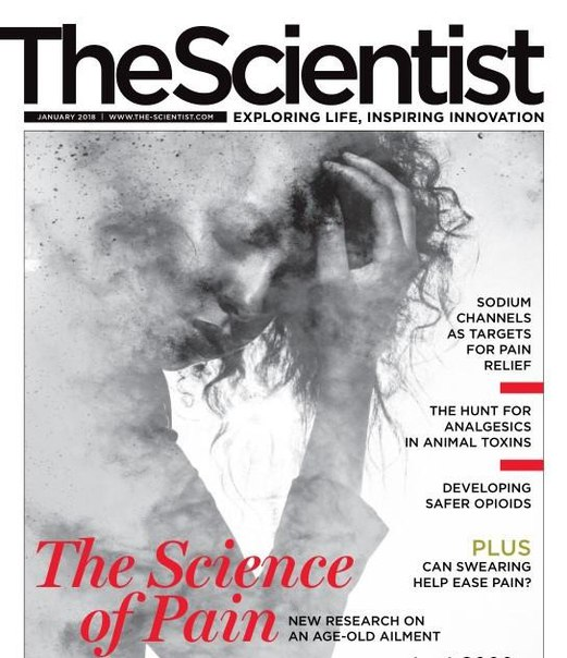 The Scientist-January 2018