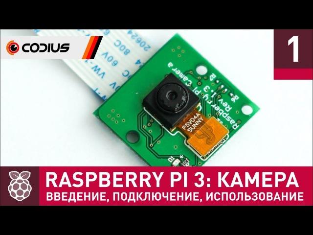 Raspberry Pi 3: Камера (1) – введение, подключение, базовые утилиты, TimeLapse, библиотека PiCamera