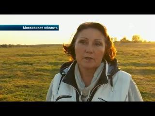 Жители в Подмосковье пытаются своими силами закрыть свалку токсичных отходов