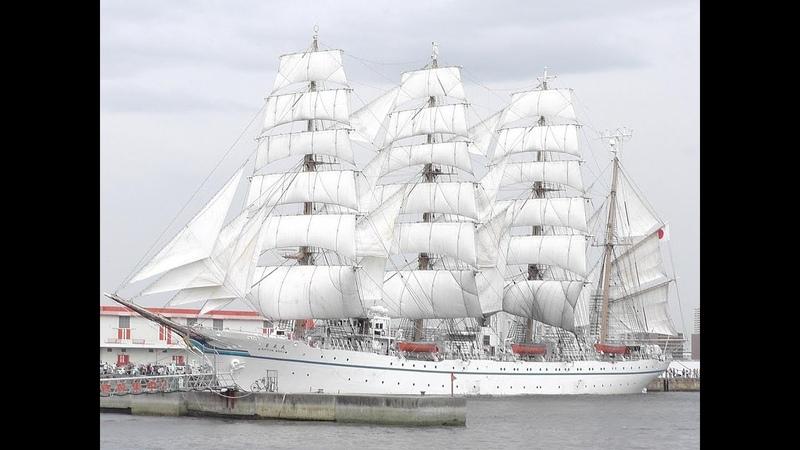 練習帆船「日本丸」セイルドリル 新港第1突堤 平成25年6月1 26085