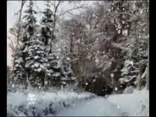 Ирина Туманова Новогодний дуэт