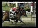 The Belmont Stakes Triple Crown Near Misses
